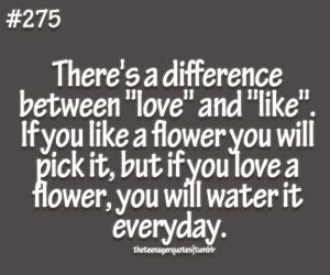 Like vs Love