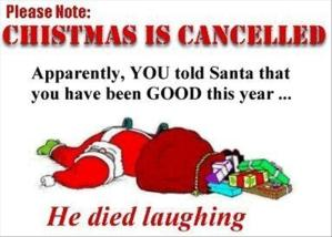 funny-christmas-pictures-26